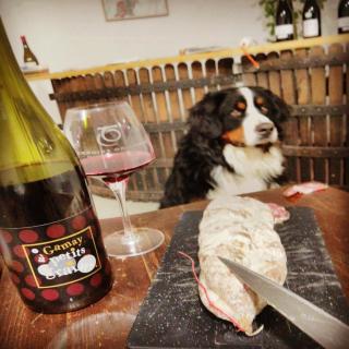 🇫🇷Rien de mieux après une journée de travail 🤩 🇺🇸 Nothing better after a day of work 🤩  #beaujolais #vinsdubeaujolais #myauvergnerhonealpes #igersbeaujolais #igerslyon #winestagram #instawine #tourism #foodie  #winetourism #vignoble #frenchwine #winelovers #winegeek #winemaker  #naturelovers #naturephotograpy #natural  #photography #authentic  #picoftheday  #igers #igersfrance #discover #explore #wineblogger #instamoment #aura_focus_on #france_focus_on  #jeanmuicheldupré